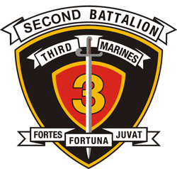 SECOND BATTALION LOGO